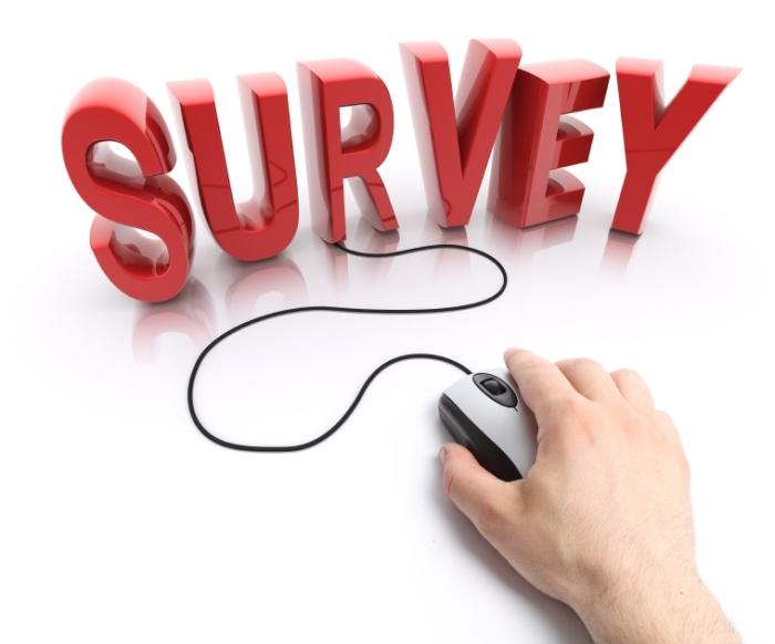 Money-Taking-Surveys